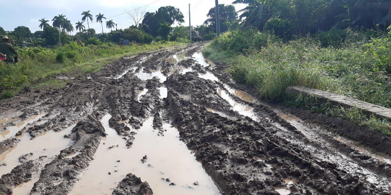 La agricultura en Cuba, el Gobierno busca las soluciones donde no están
